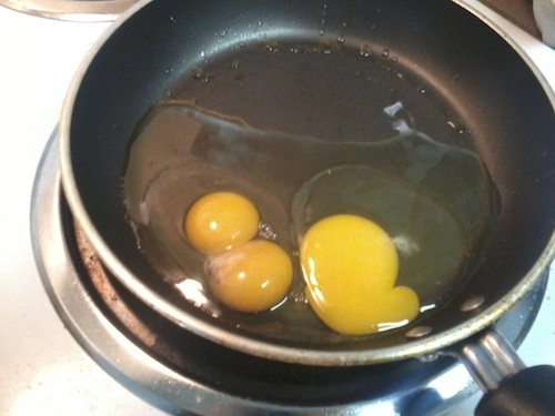 twin egg yolks